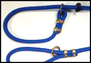 Blue Slip Lead - close up SMALL