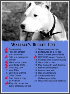 wallace bucket list