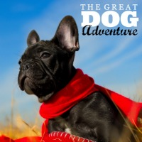 great dog adventure