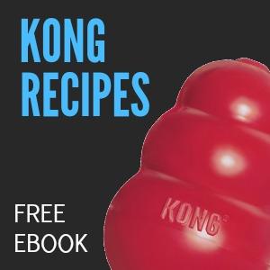 Kong ebook sidebar image