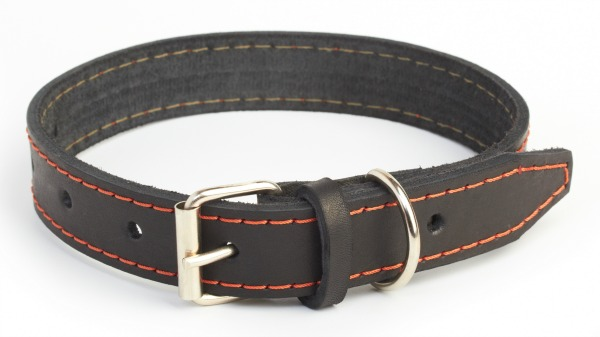 flat dog collar for leash walking