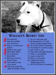 wallace bucket list
