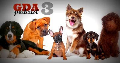 GDA3: How to Find the Right Dog