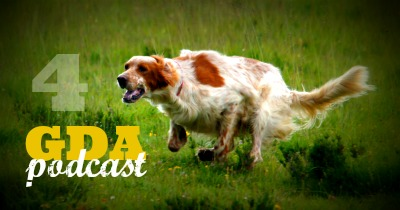 GDA4: How to Better Exercise Your Dog with Tracey Patterson
