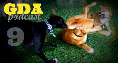 GDA9: Understanding Dog Play