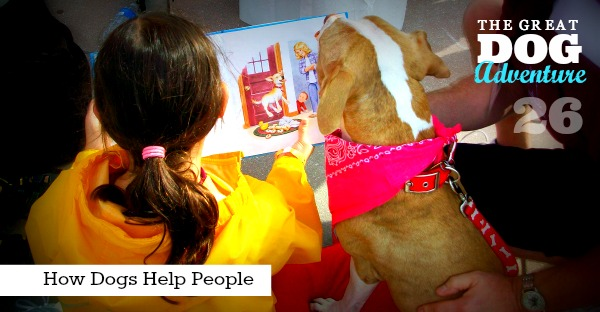GDA26: How Dogs Help People