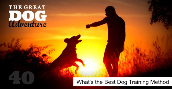 GDA40: What's the Best Dog Training Method?