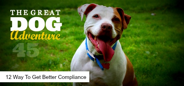 GDA45: 12 Ways to Get Better Compliance