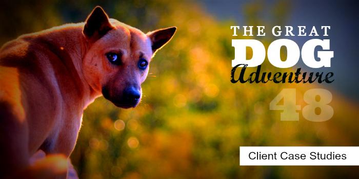 GDA48: Client Case Studies
