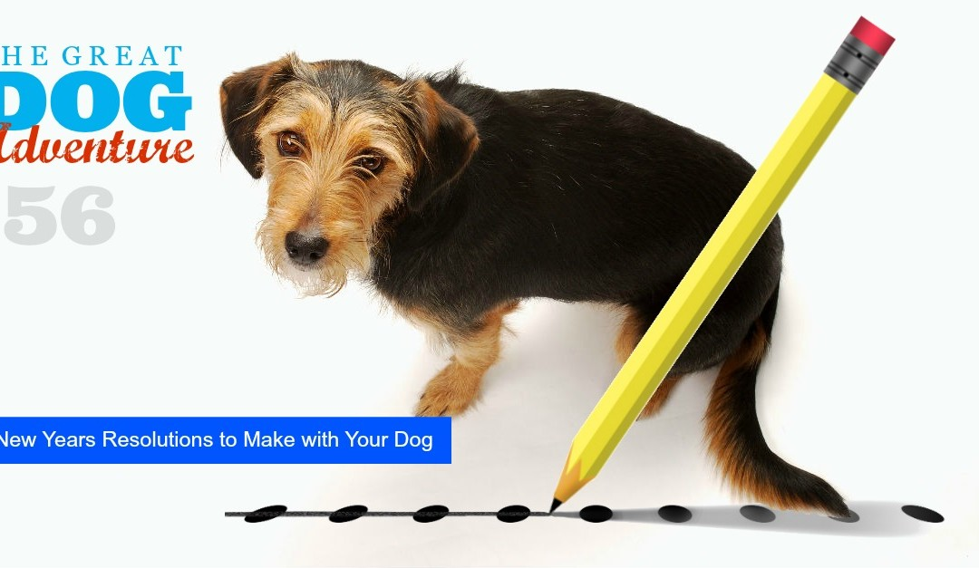 GDA56: 10 New Years Resolution to Make with Your Dog