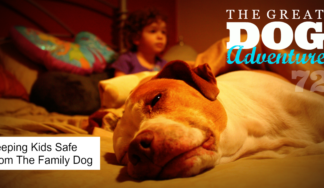 GDA72: Keeping Kids Safe From The Family Dog