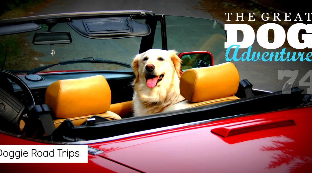 GDA74: Doggie Road Trips