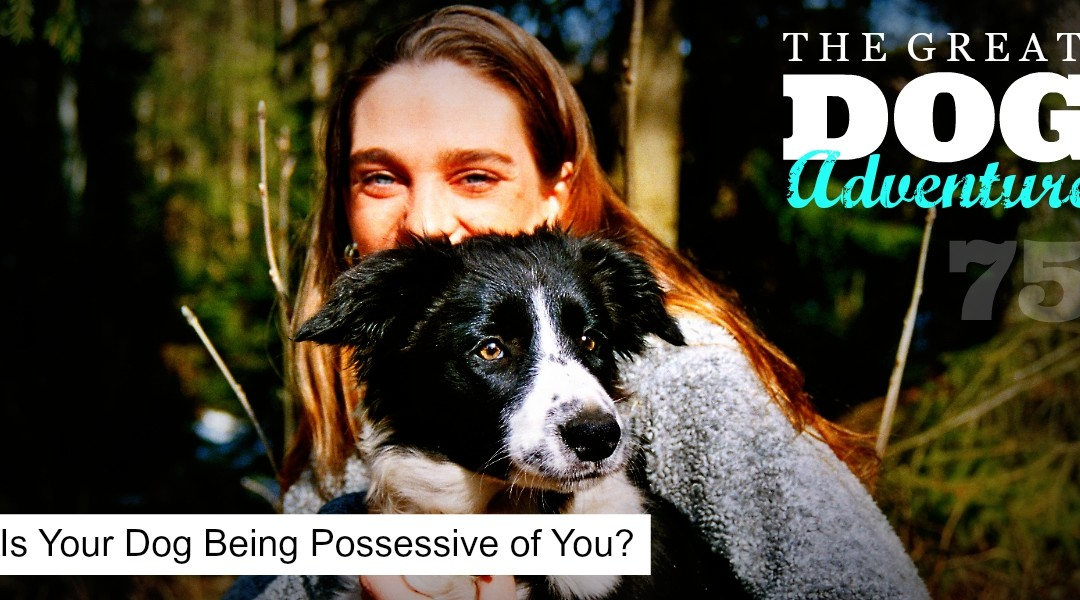 GDA75: Is Your Dog Being Possessive of You?
