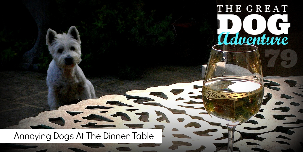 GDA79: Annoying Dogs At The Dinner Table