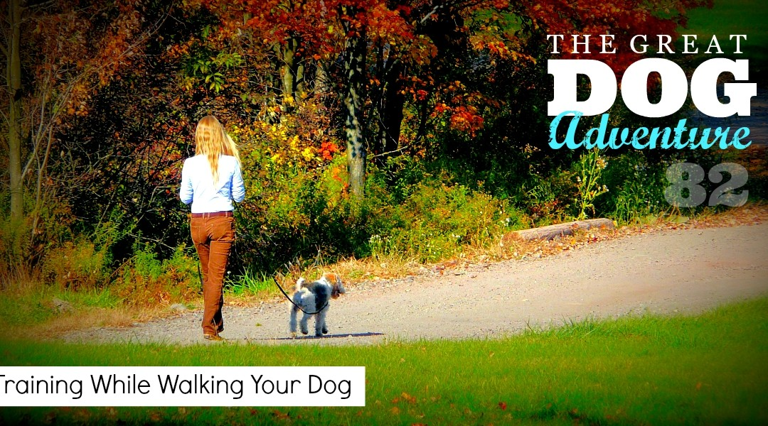 GDA82: Training While Walking Your Dog