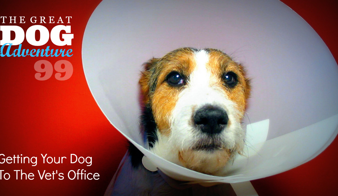 GDA99: Getting Your Dog To The Vet's Office