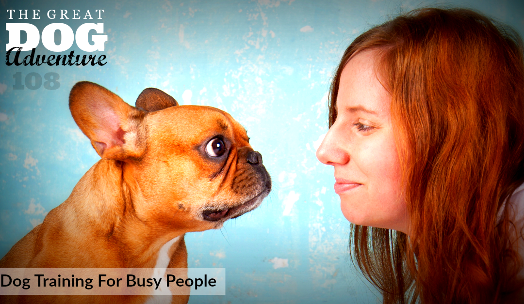 GDA108: Dog Training For Busy People