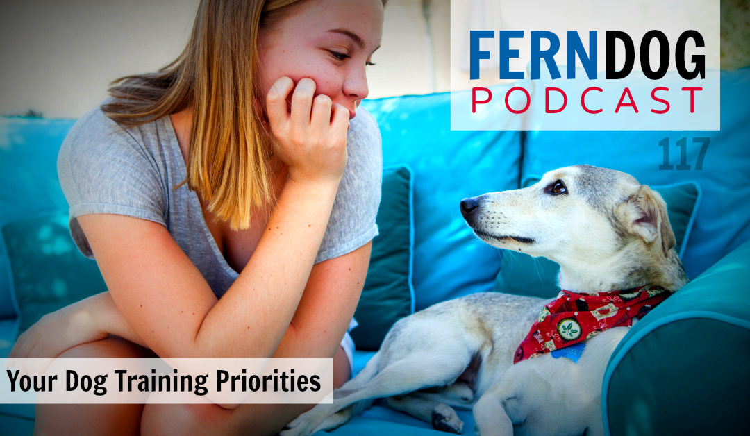 FernDog117: Your Dog Training Priorities