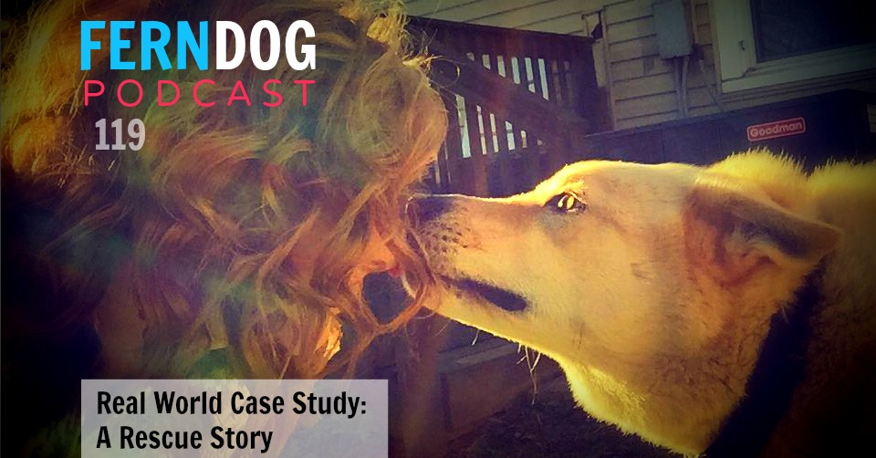 FernDog119: Real World Case Study – A Rescue Story