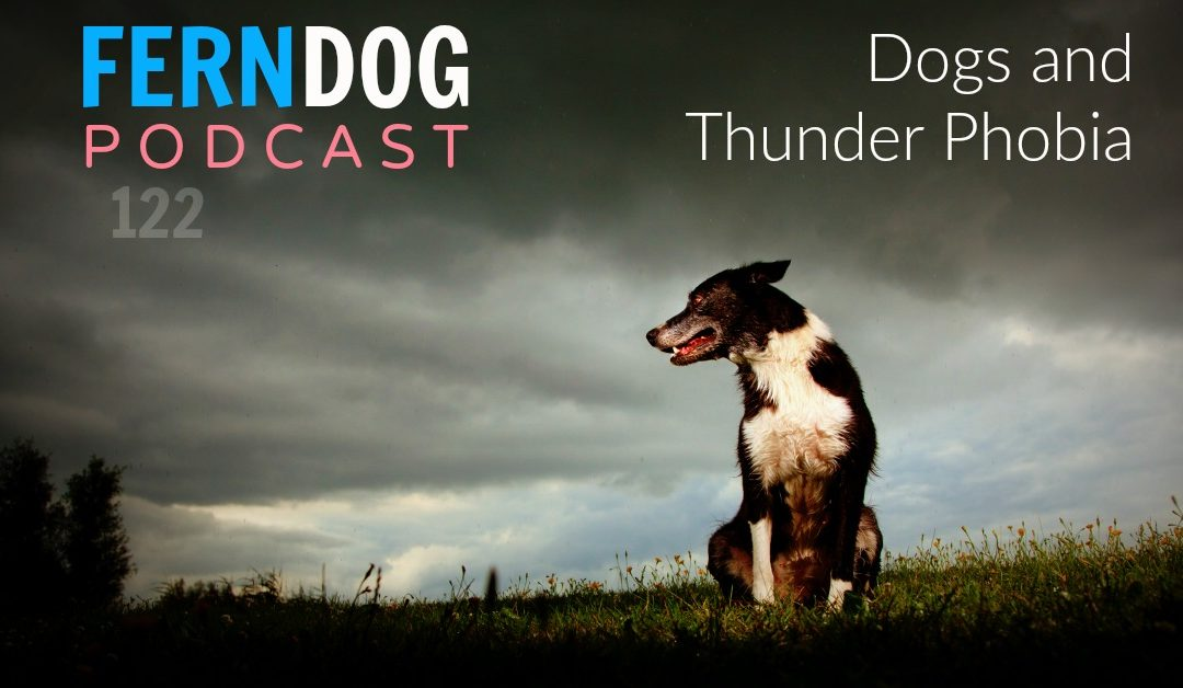 FernDog122: Dogs and Thunder Phobia