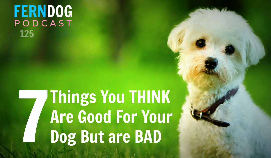 FernDog125: 7 Things You Think Are Good For Your Dog But Are Bad