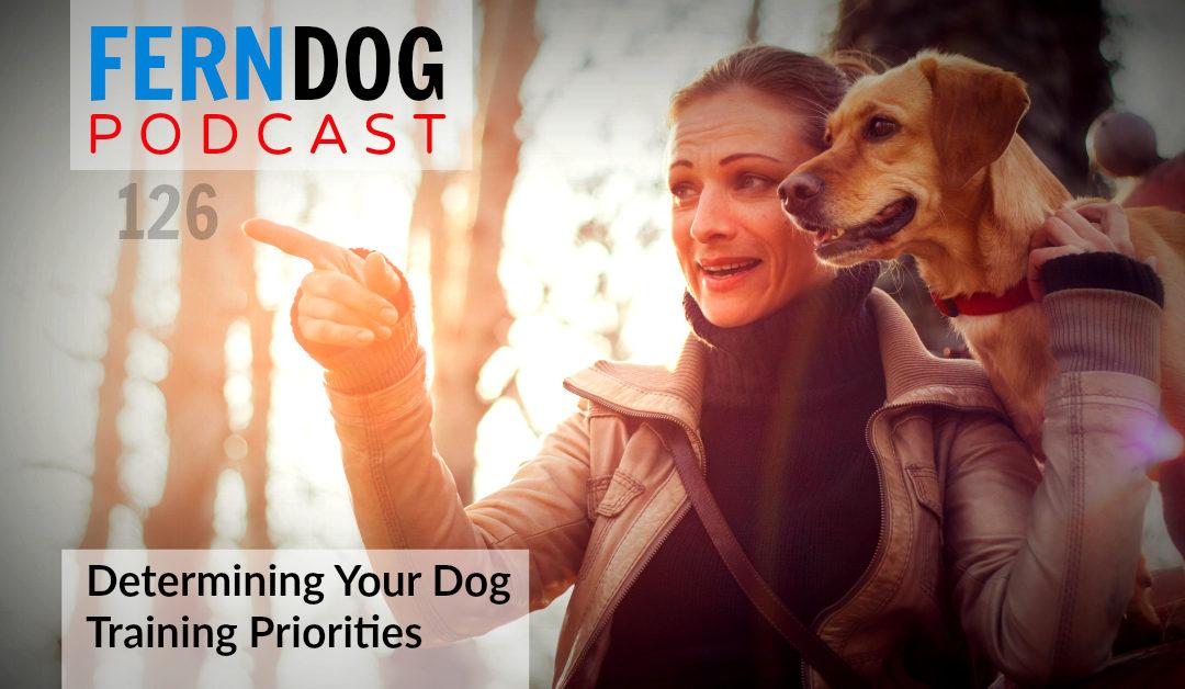 FernDog126: Determining Your Dog Training Priorities