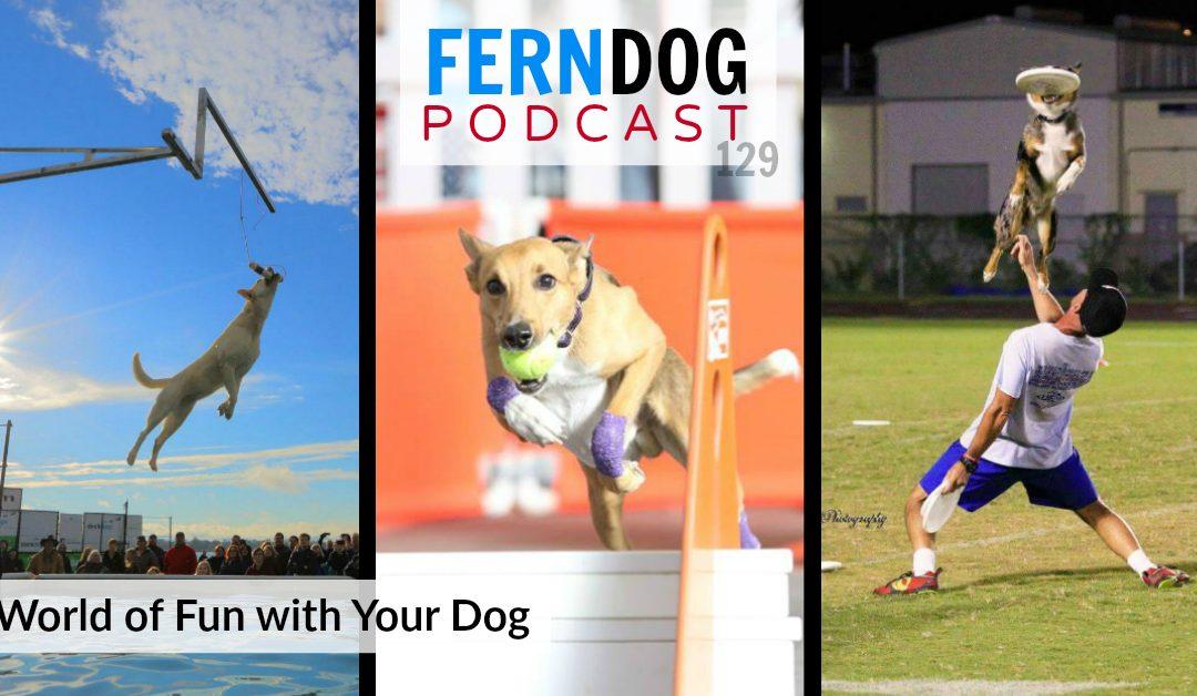 FernDog129: A World of Fun With Your Dog