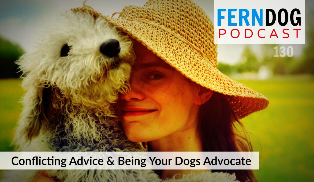 FernDog130: Conflicting Advice And Being Your Dogs Advocate