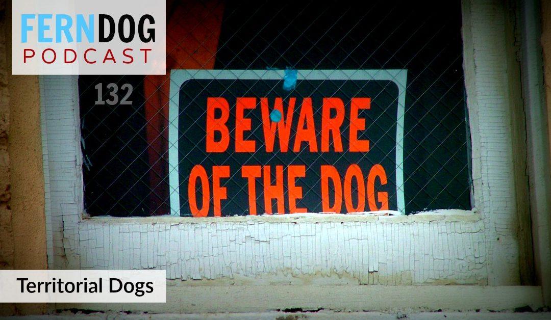 FernDog132: Territorial Dogs