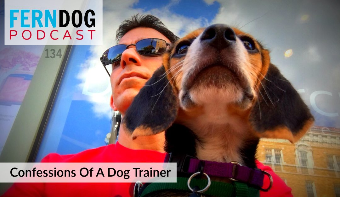 FernDog134: Confessions Of A Dog Trainer