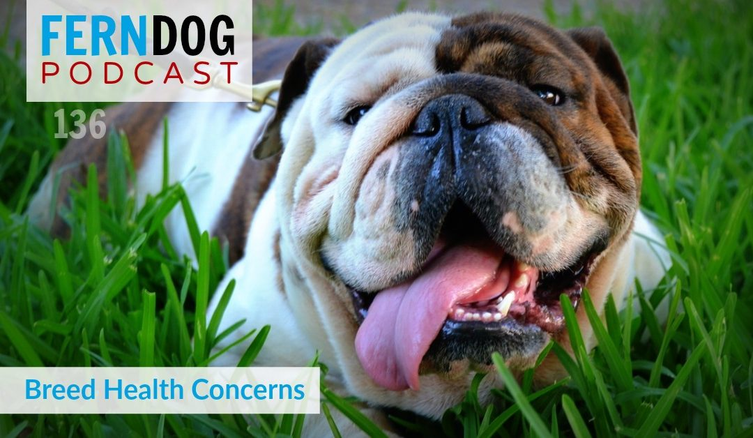 FernDog136: Breed Health Concerns