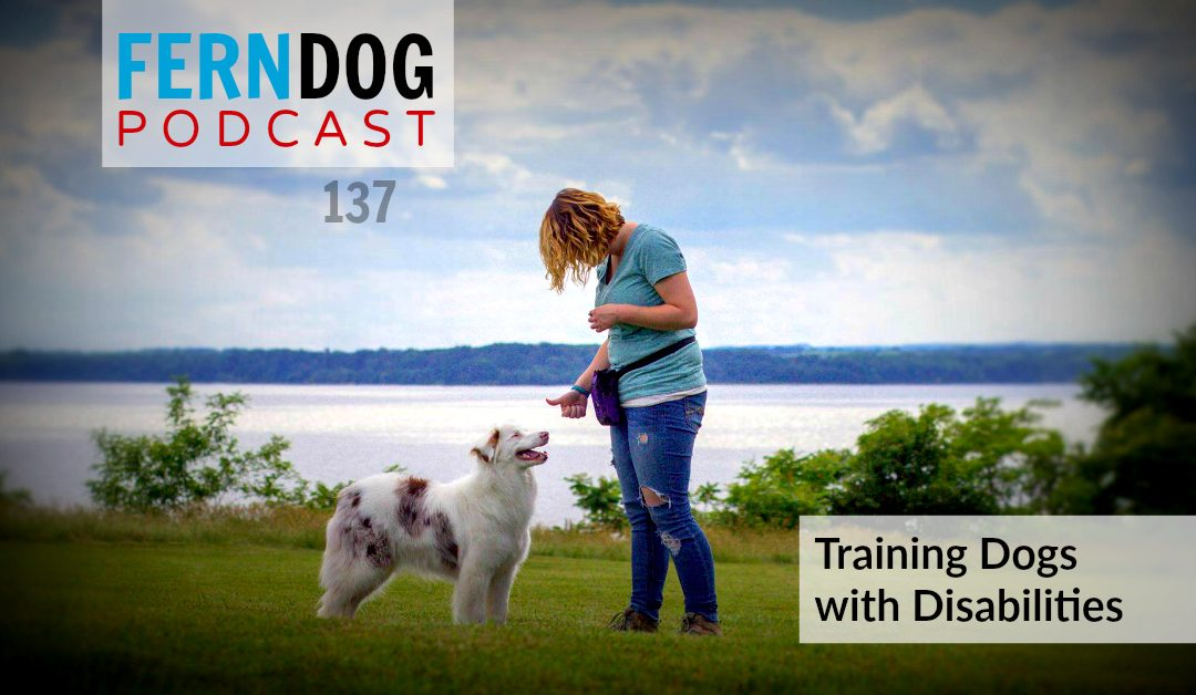 FernDog137: Training Dogs with Disabilities
