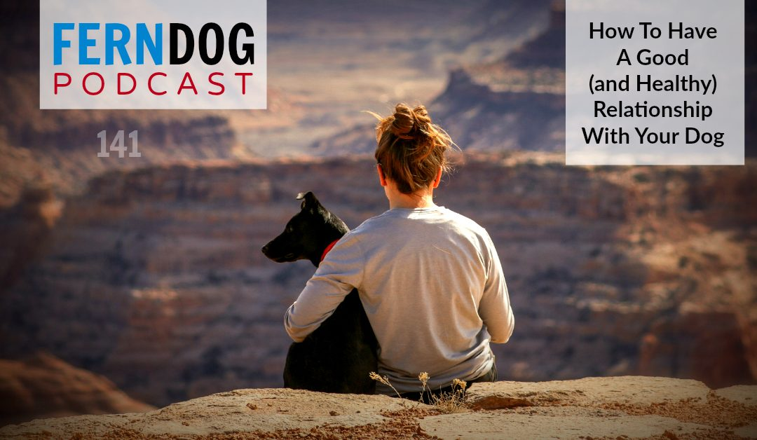 FernDog141: How To Have A Good (& Healthy) Relationship With Your Dog