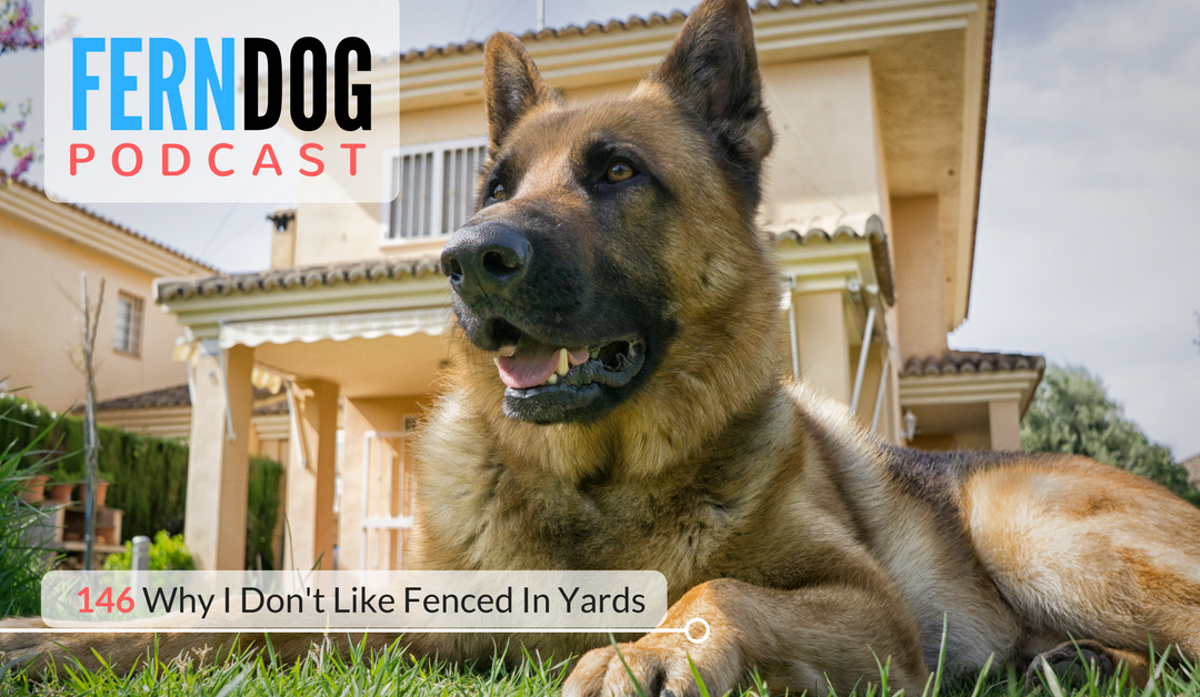 FernDog146: Why I Don't Like Fenced In Yards