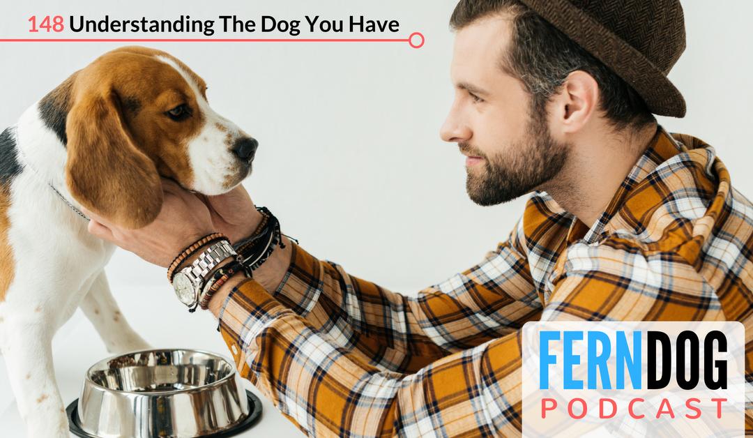 FernDog148: Understanding The Dog You Have