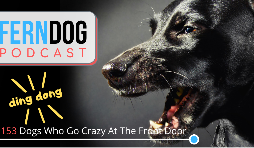FernDog 153: Dogs Who Go Crazy At The Front Door