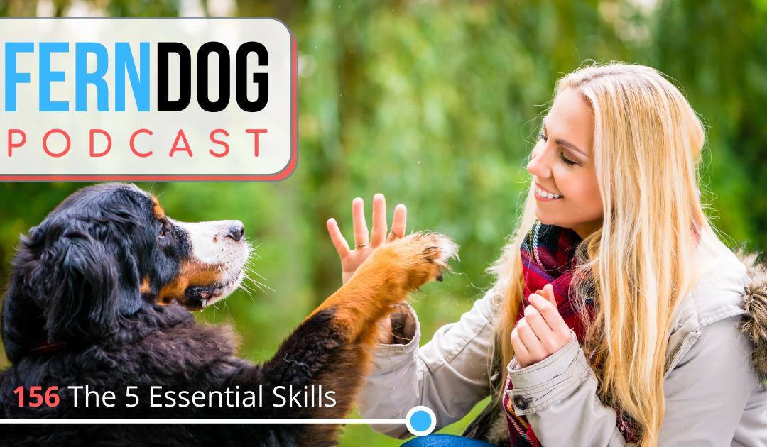 FernDog 156: The 5 Essential Skills